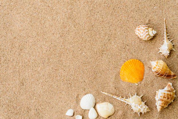 Παιχνίδια στην άμμο, Κυριακή 17 Νοεμβρίου